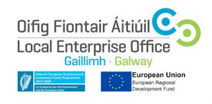 Local Enterprise office Galway logo